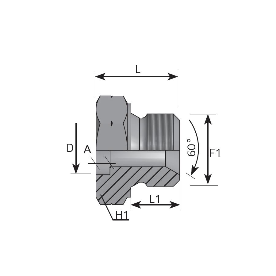 Metric Welding Adapter Bspp Dup2 Vitillo Gas Diagram